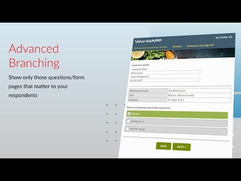 Branching & Logic for forms and surveys