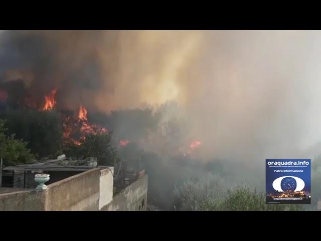Grottaglie 16agosto2021 - ripreso l'incendio a Pineta Frantella sembrerebbe domato