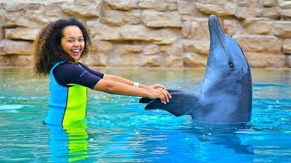 TIANA'S SWIMMING WITH DOLPHINS!!