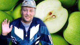 Яблоня из косточки - Как вырастить яблоню из косточки - стратификация семян(Я больше года занимаюсь выращиваем яблони из косточки. Есть хорошие результаты. В этом видео я показываю,..., 2016-07-14T20:14:56.000Z)