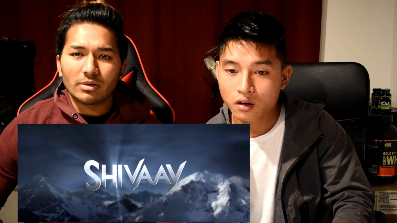 Download SHIVAAY Trailer | Reaction | Ajay Devgan - With Mal