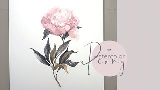 Watercolor Peony Flower painting demonstration