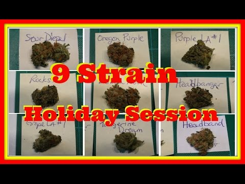 9 Strain Holiday Session - VS#222