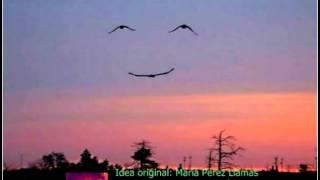 Amaneceres en tu sonrisa
