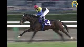 ディープインパクトが勝った2006年有馬記念は中山競馬場だけではなく、...