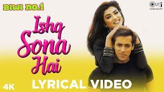 Ishq Sona Hai | Salman Khan, Sushmita Sen | Shankar Mahadevan, Hema Sardesai | Biwi No 1 | 90s Hits YouTube Videos