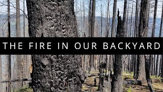 The Fire in Our Backyard - Eagle Creek Fire 360 VR Documentary