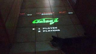 #funnycat Peppi Play Galaga