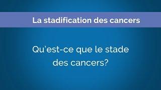 La stadification des cancers // Chapitre 2: Qu'est-ce que le stade des cancers?