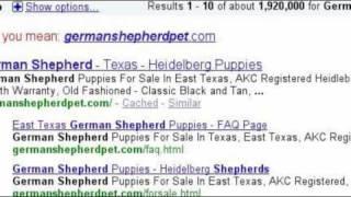 East Texas German Shepherd
