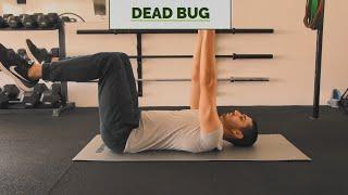 Dead Bug - demonstracija i greške