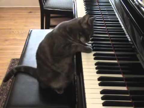 Скачать игру пианино про