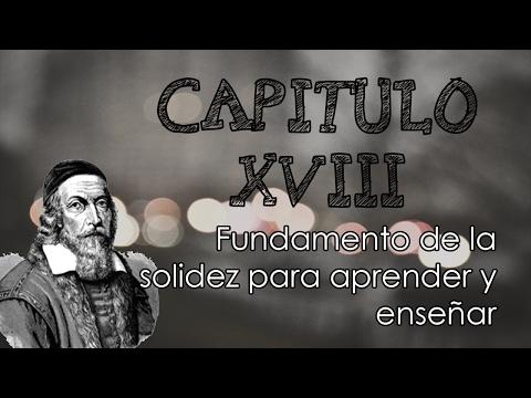 Capitulo 18, Didáctica Magna