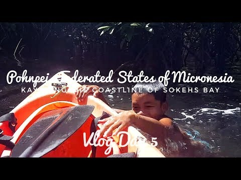 Kayaking the mangroves of Sokehs Bay in Pohnpei, Micronesia | Vlog Day 5