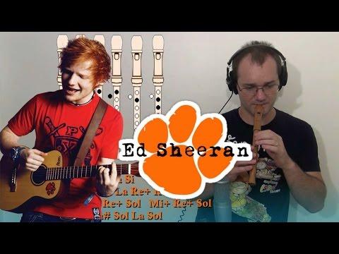 Shape of you. Ed Sheeran - para Flauta Dulce -Flute Recorder Notes- Tutorial Cover con notas