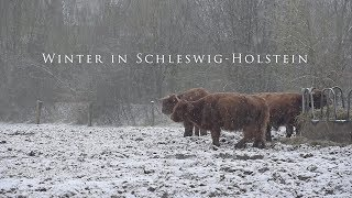 Winter in Schleswig-Holstein - Eine Hommage, March 2018
