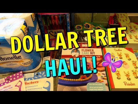 DOLLAR TREE HAUL! Christmas and Cake Boss! November 11, 2019 | LeighsHome