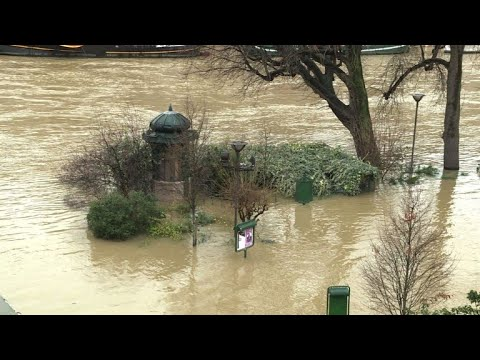 Tourists take in the flooded sights of Paris