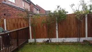 Arched Panel Garden Fence Halewood Liverpool