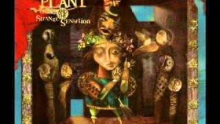 Robert Plant and the Strange Sensation - All the King