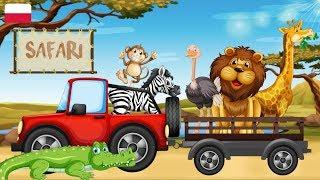 Nauka zwierząt dla dzieci - Zwierzęta w Afryce - Dzikie zwierzęta na SAFARI
