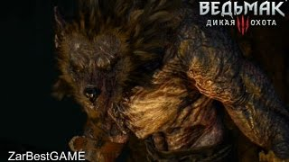 The Witcher 3 Wild Hunt - В Волчьей шкуре - Моркварг. Прохождение 61 Gameplay Walkthrough