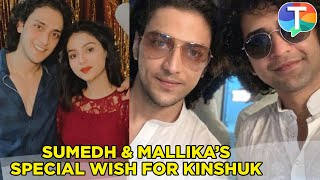 Sumedh and Mallika's special wishes for Kinshuk Vaidya on his birthday
