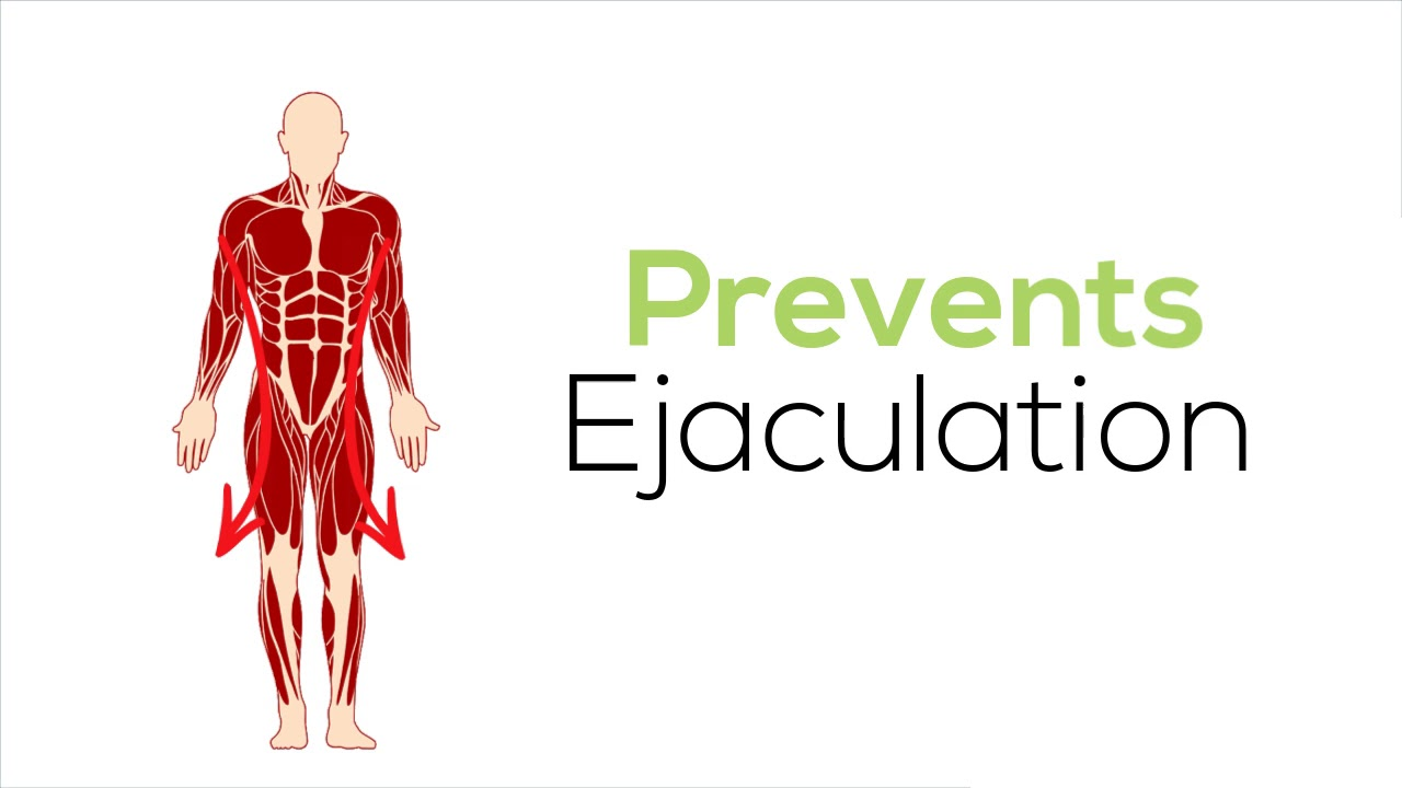 4 Steps To Cure PE- Premature Ejaculation Once for All. - YouTube