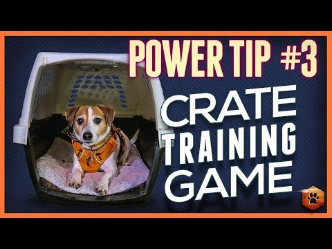 Crate Training Games - Power Tip #3: Bait + Restrain