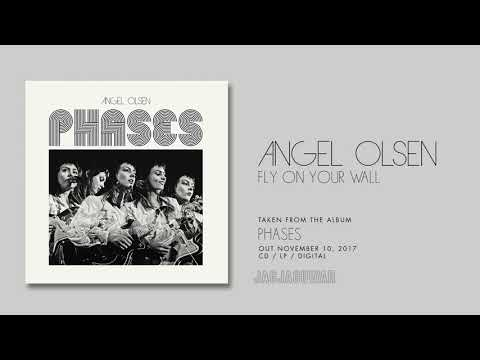 Angel Olsen  Fly On Your Wall  Audio
