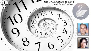 The Nature of Time   Tarun Pradhaan   The Information Paradise Podcast #14.5 with David Reynolds