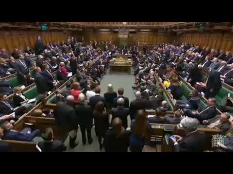 Brexit at the bar, free trade and no-deal travel plans | Raw Politics Brexit Brief Mp3