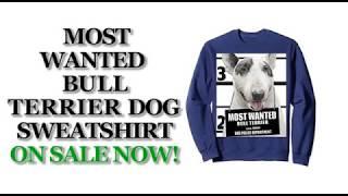 Most Wanted Bull Terrier Funny Dog Sweatshirts - Men's, Women's, Kid's - Black, Dark Heather, Navy