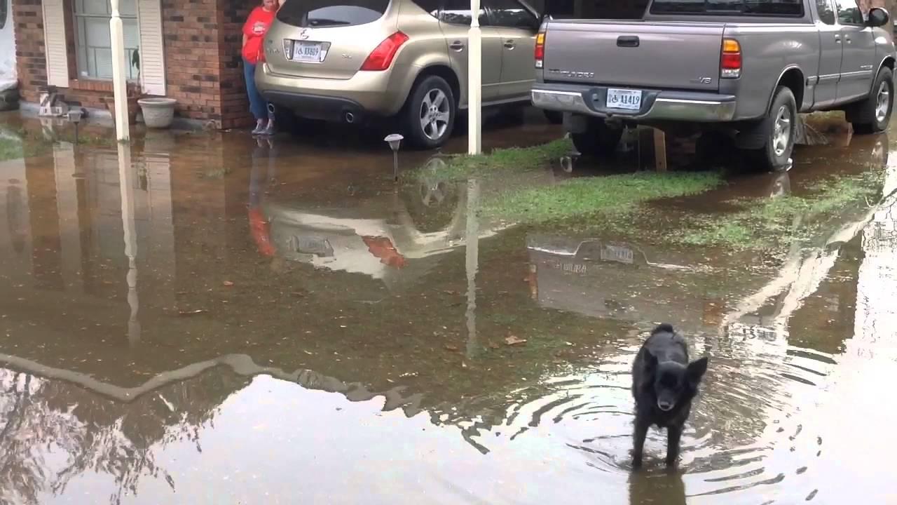 Mississippi jackson county escatawpa - Pascagoula River Floods Escatawpa