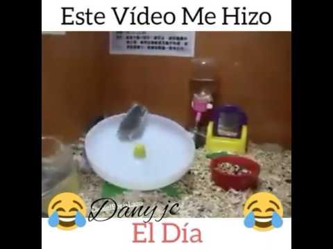Videos de risa para facebook 2017