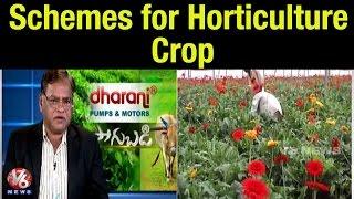 vuclip Incentive schemes for Horticulture Crop   Horticulture Commissioner Dr Venkatarami Reddy - Sagubadi