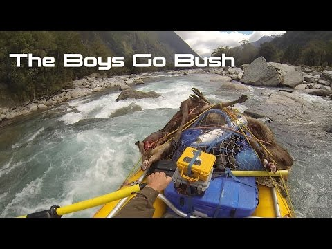 The Boys Go Bush New Zealand Deer Hunting