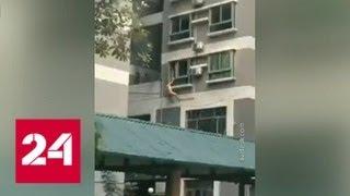 В  Китае неудачливый любовник, пытаясь выбраться из квартиры, упал в мусорный бак - Россия 24