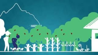 Coeur de Forêt : le modèle qui protège la forêt et les Hommes !