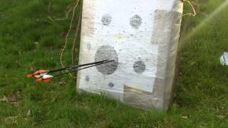 Shooting PSE Stinger X in 60 Yards.