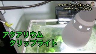 02050-aquarium_thumbnail