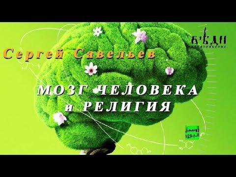 С.В. Савельев. Мозг