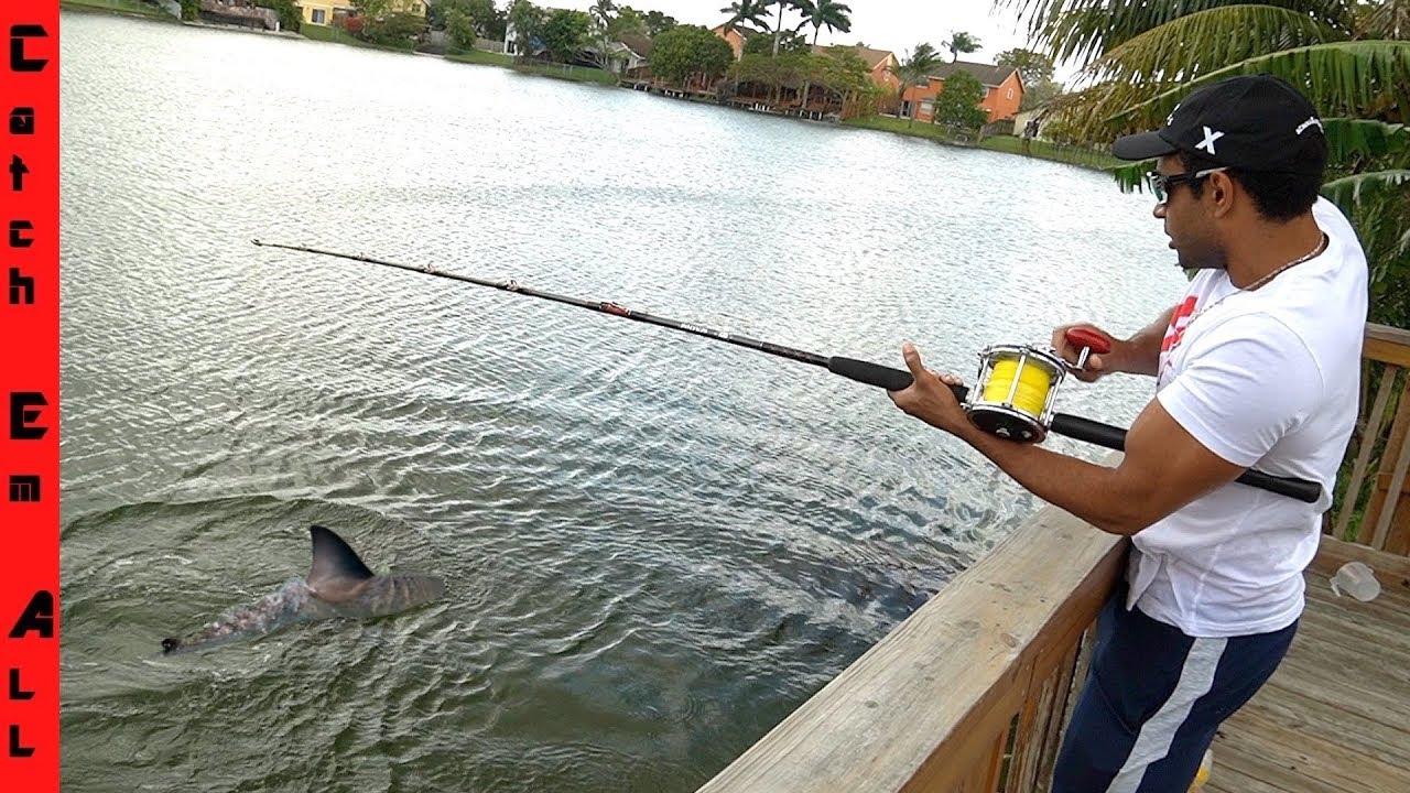 Download SHARK FISHING in BACKYARD POND! **Freshwater Isolated Lake**