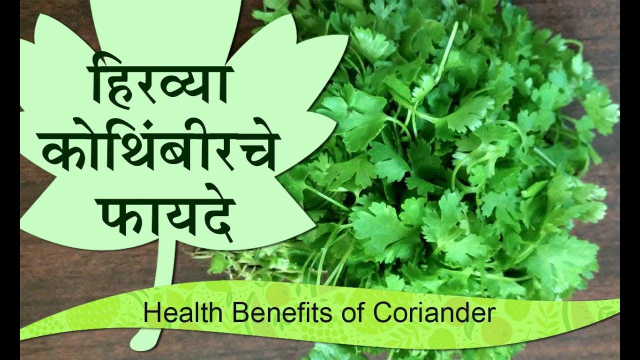 हिरव्या कोथिंबीर चे फायदे | health
