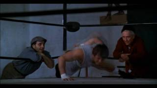 Bill Conti - Gonna fly now (Rocky) HD