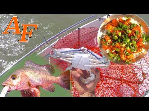 Chilli Lime Garlic Crab Catch N Cook With Tackle Club Fishing Challenge EP.459