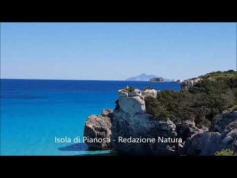 L'Isola incontaminata: Pianosa con i suoi splendidi colori e suoni