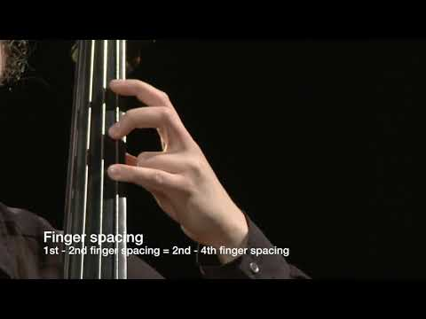 Double Bass Finger Spacing