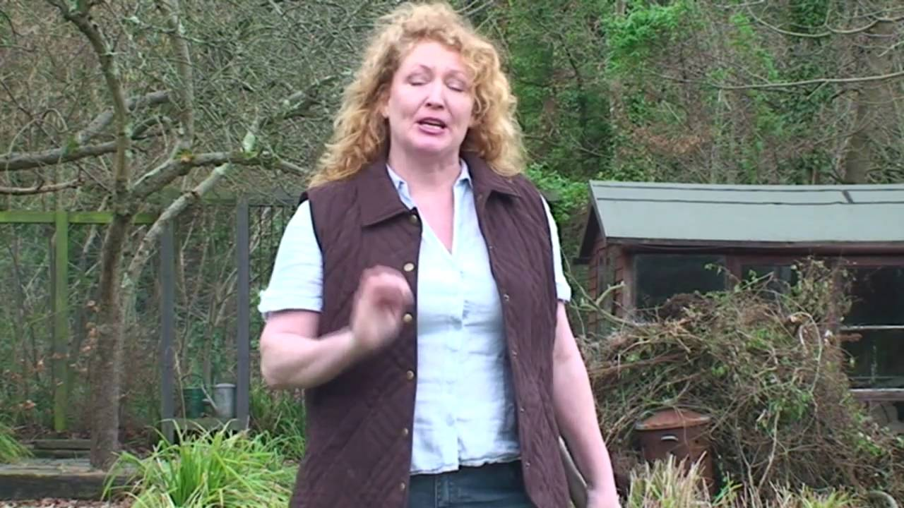 Lawn Maintenance   Charlie Dimmock   Gardening Direct   YouTube