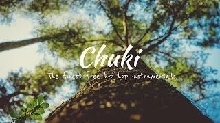 Download 'Slow Down' Real Chill Old School Hip Hop Instrumentals Rap Beat #26 | Chuki Beats MP3 song and Music Video